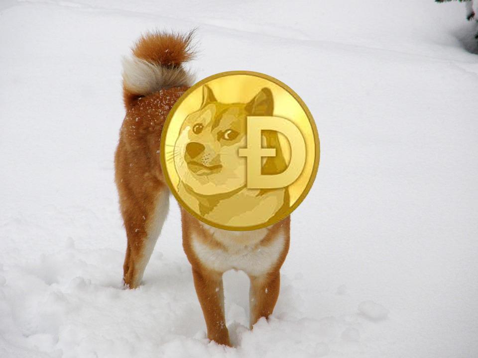 Criptomoneda Dogecoin perro