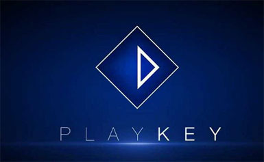 Blockchain Playkey