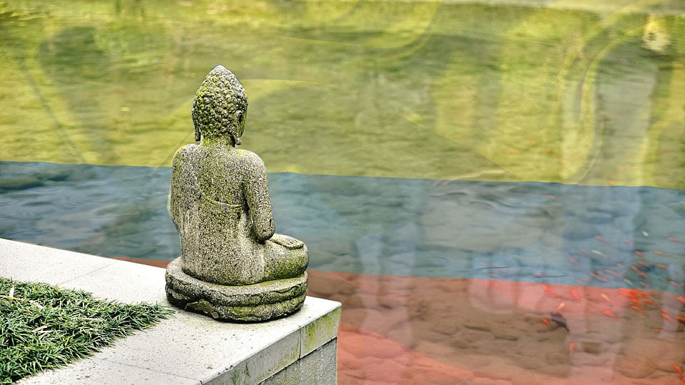 Buda.com colombia